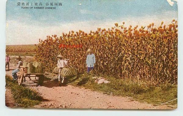20150912 満州 高粱畑