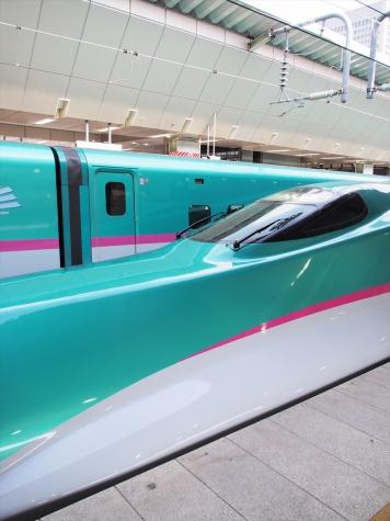 東北新幹線 E5系 はやぶさ7号・なすの253号