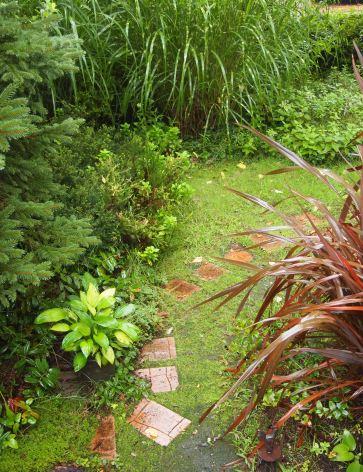 my-garden 027 (2)