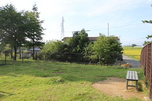 梓川ドッグラン小型犬エリア3