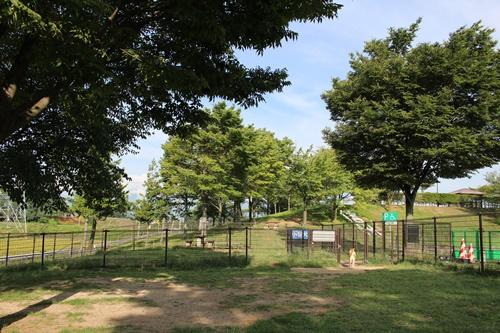 梓川サービスエリア(下り)のドッグラン
