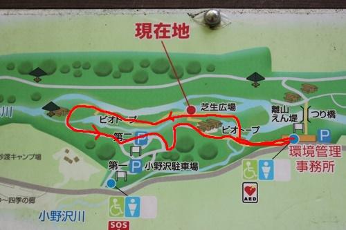 烏川渓谷緑地水辺エリアを散策②管理事務所から左側エリア