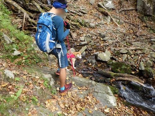 雁坂峠へ山登りしてきました(その2・井戸ノ沢出合から頂上でごはん)