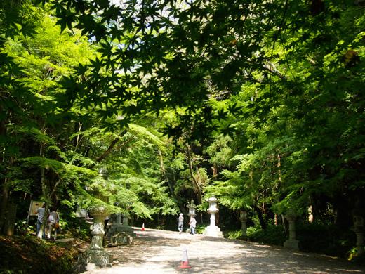 katorifutatabi02.jpg