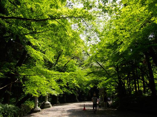 katorifutatabi04.jpg