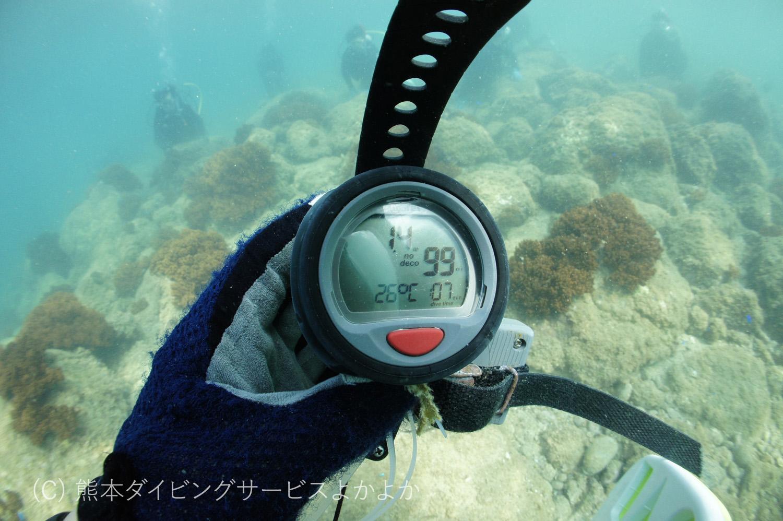 ダイビング 熊本