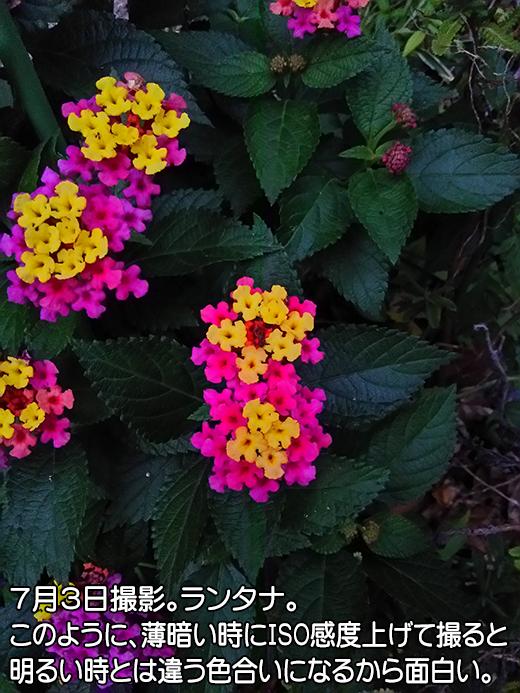 201507031856.jpg