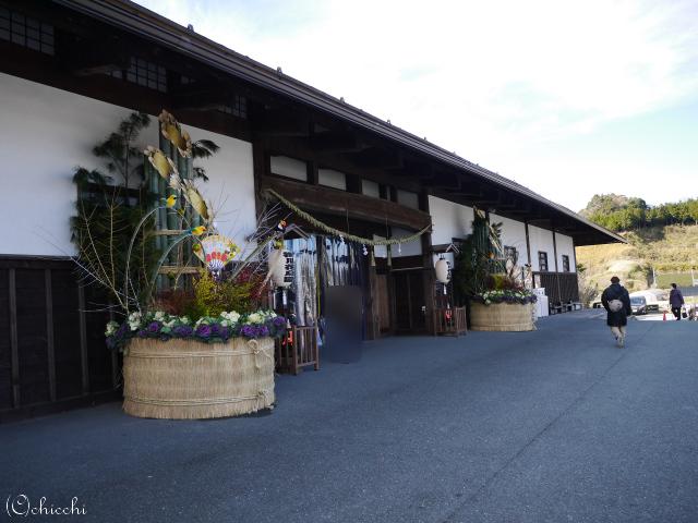 天候関係なし雨でも楽しめるよ 華やかなバードパラダイス 掛川花鳥園。