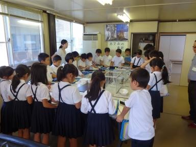 児童達は、25日からの飼育と観察のため研鑽を