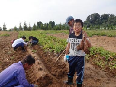 子供も満足した芋掘りでした。