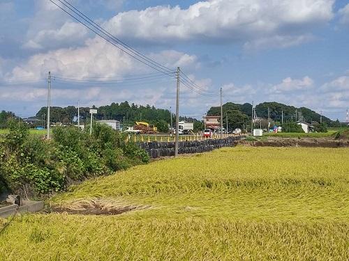 台風18号水害の爪痕…壬生町⑨