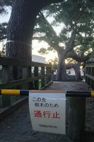 20150828_1-tsukodome.jpg