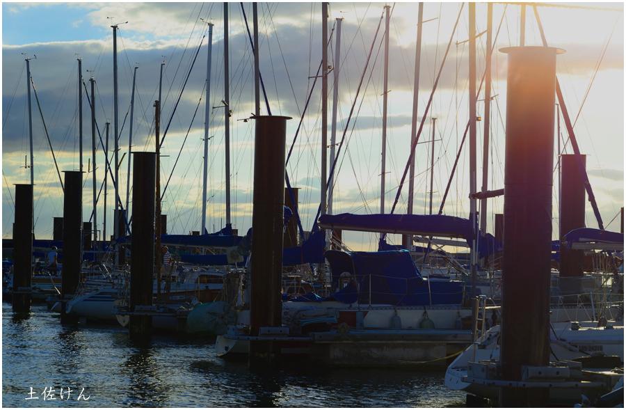 北港ヨットハーバー1