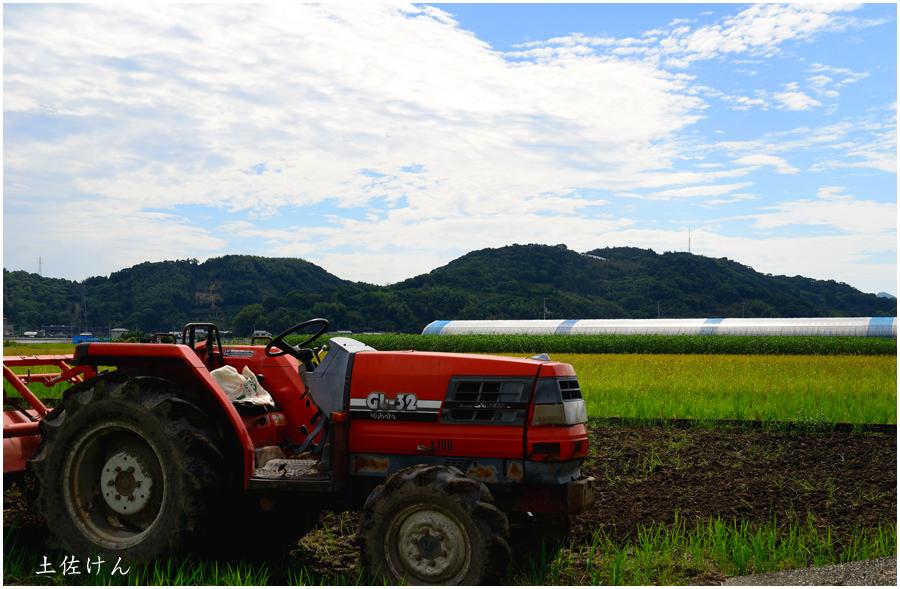 高知・田園風景1