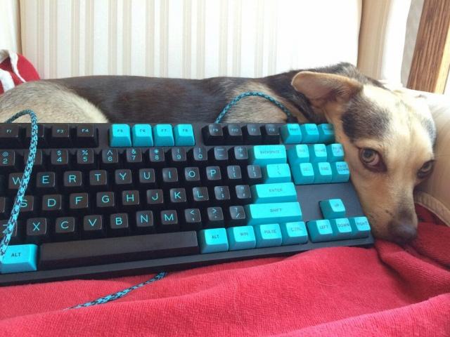 Mechanical_Keyboard55_79.jpg
