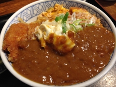 ヒライ:カレーカツ丼