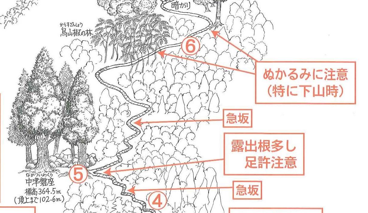 miwayama_02.jpg