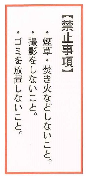 miwayama_05.jpg